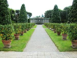 giardino-dei-limoni-a-marlia
