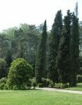 marlia-scorcio-del-parco-ottocentesco