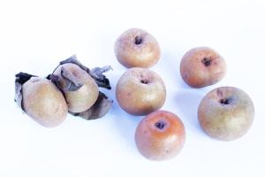 mela-piatlin-biellese