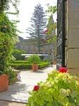 Palazzo-Parisio-cancello-di-passaggio-tra-i-due-giardini-e-al-centro-un-albero-di-araucaria