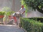 Palazzo-Parisio-giardiniere-al-lavoro