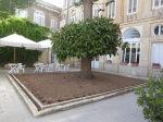 Palazzo-Parisio-giardino-all'italiana-coffeeshop