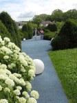estremita-del-giardino-con-hydrangea-annabel