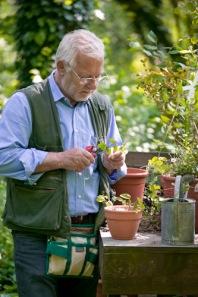 Il sale danneggia il giardino mimma pallavicini s weblog for Giardiniere bologna