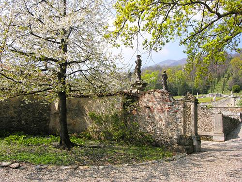 Una foto una storia dal 21 marzo 2009 mimma for Giardino fiorito