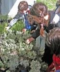 piante-e-bambini-a-milis