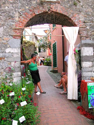 » mostra-dei-fiori-a-montemarcello-attorno-alla-porta-del-paese