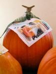 la-zucca-di-Halloween-del-sindaco