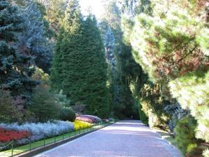 Villa-Taranto-viale-di-accesso-domenica-18-ottobre-2009a-