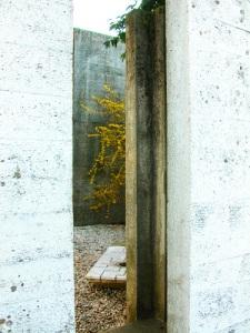 tomba-Brion-scorcio-su-tomba-Carlo-Scarpa-con-forsizia-fiorita