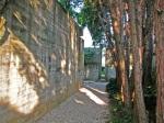 tomba-Brion-vialetto-di-cipressi-su-tomba-Carlo-Scarpa