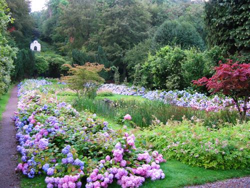 Sognando giardini svedesi – Mimma Pallavicini\'s Weblog