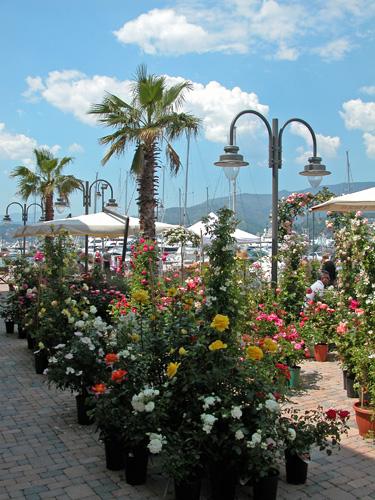 Yacht and garden a genova mimma pallavicini 39 s weblog for Giardinieri genova