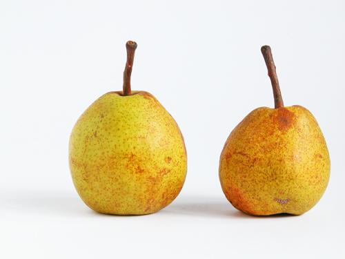 Alberi da frutto a 1500 metri mimma pallavicini s weblog for Piante da frutto a 1000 metri