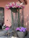 composizioni-di-fiori-recisi-a-Floracult-2013