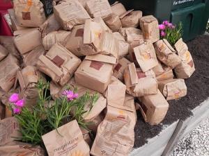 """Dolenti note. Lo stand dell'AMA a Floracult, con l'omaggio ai visitatori di sacchetti da 1/2 kg di compost, mi ha incuriosito, visto che mi sto interessando di compostaggio e prendo nota di ciò che riguarda la raccolta dell'organico dai rifiuti urbani. A Roma la percentuale è ancora bassa, e la differenziata stenta a decollare: hanno gridato al miracolo per la percentuale del 30,2% raggiunta lo scorso dicembre, quando la CE alla stessa data chiedeva il 65%. E il """"patto per Roma"""" si è dato tempo per mettersi a pari con l'Europa civile, ponendo come obiettivo del 2013 il 40% di differenziata. Mi ha raccontato a Floracult un dipendente AMA, addetto alla sensibilizzazione dei romani, che la gente non ne vuole sapere e allora hanno deciso di ricorrere alle maniere forti, aprendo e controllando i sacchetti e multando la famiglia quando i rifiuti non ben differenziati sono riconoscibili come di qualcuno, sennò tutte le famiglie del condominio (110 euro a famiglia!). Lo scorso anno gli """"ispettori"""" con l'ingrato compito di piegare i cittadini al civismo hanno fatto 16.000 multe. Una nota a margine. Ho chiesto perché il compost non lo vendono; mi hanno risposto che, in quanto società con altre finalità, non possono. A San Francisco dal compost ricavato dall'umido urbano incamerano ogni anno 20 milioni di dollari. Te la do io l'America."""