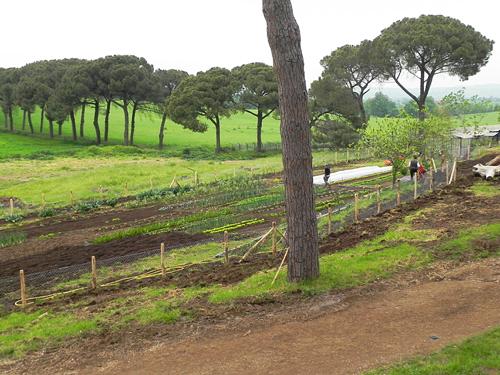 paesaggio-romano-con-orto-di-Pietro-ai-Casali-del-Pino