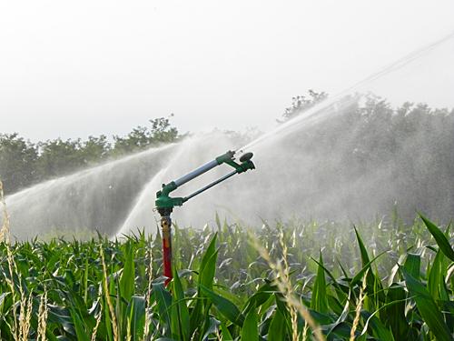 Arriva l acqua nei campi agricoli dell alto casertano e for Irrigazione per aspersione