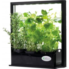 lampada per piante da appartamento
