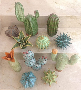 cactus...-alternativi