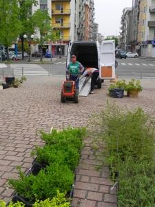 guerrilla-gardening-FAI-Vercelli-2
