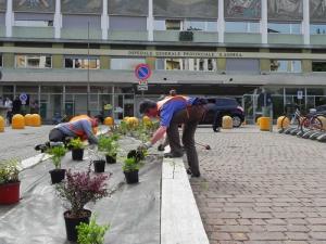 guerrilla-gardening-FAI-Vercelli-4