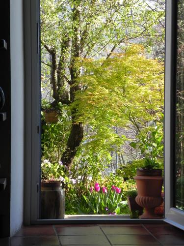 primavera-a-casa-mia