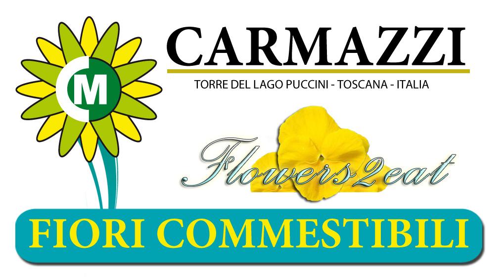 Claudio barisone mimma pallavicini 39 s weblog for Fiori edibili