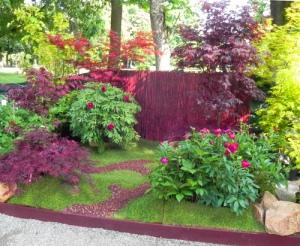 giardino-aceri-e-peonie
