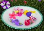 I-fiori-nel-piatto-a-Acqui-Terme