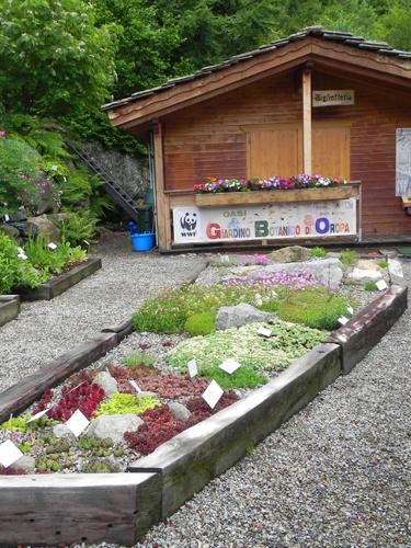 Maggiociondolo di montagna mimma pallavicini 39 s weblog - Giardini di montagna foto ...