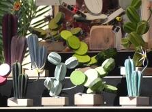 cactus-di-artista