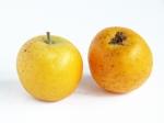 mela-Renetta-Ananas