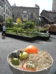 Maestri-del-paesaggio-Bergamo-Alta-2015