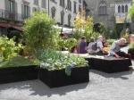 Maestri-del-paesaggio-Bergamo-Alta-2015_1