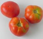 pomodoro-Montecarlo