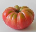 Pomodoro-Oxhart-Belmonte