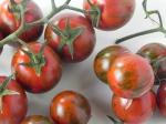 pomodoro-Tigro-F1-dettaglio