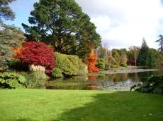 Sheffield-Park-autunno