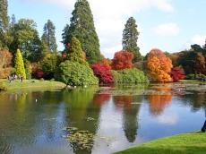Sheffield-Park-scorcio-lago