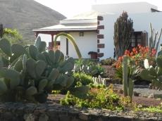 giardino-a-La-Matilla
