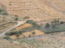 parque-rural-Betancuria-Mirador-Risco-de-las-penas-12