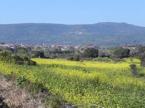 paesaggi-Sardegna