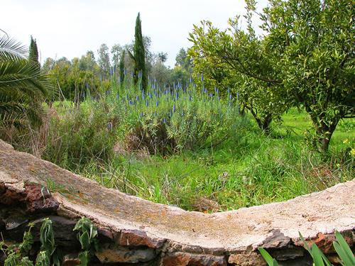 paesaggio-Sardegna-1